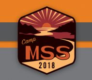Camp MSS graphic